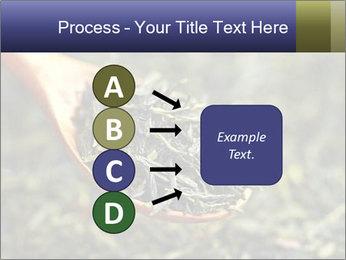 0000072617 PowerPoint Template - Slide 94