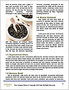 0000072617 Word Templates - Page 4
