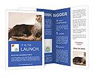 0000072634 Brochure Template