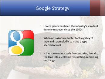 0000072634 PowerPoint Template - Slide 10