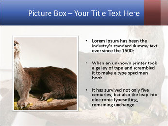 0000072634 PowerPoint Template - Slide 13