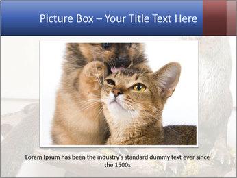 0000072634 PowerPoint Template - Slide 16
