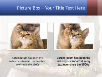 0000072634 PowerPoint Template - Slide 18