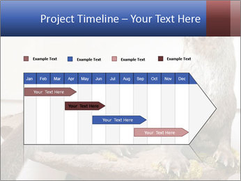 0000072634 PowerPoint Template - Slide 25