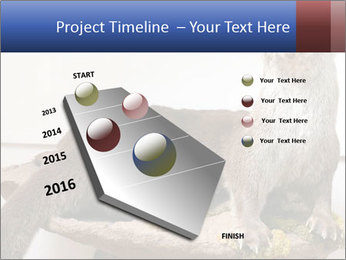 0000072634 PowerPoint Template - Slide 26