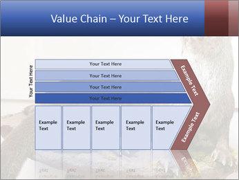 0000072634 PowerPoint Template - Slide 27