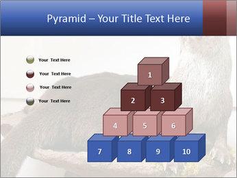 0000072634 PowerPoint Template - Slide 31