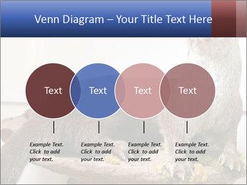 0000072634 PowerPoint Template - Slide 32