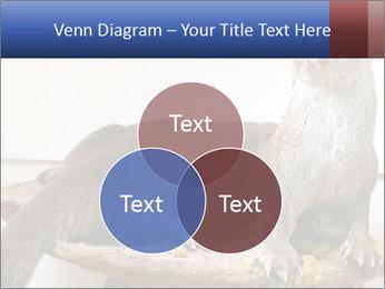 0000072634 PowerPoint Template - Slide 33