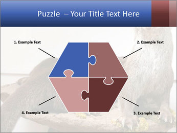 0000072634 PowerPoint Template - Slide 40