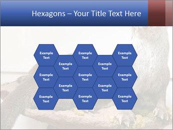 0000072634 PowerPoint Template - Slide 44