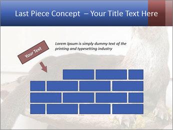 0000072634 PowerPoint Template - Slide 46