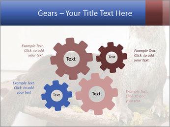 0000072634 PowerPoint Template - Slide 47