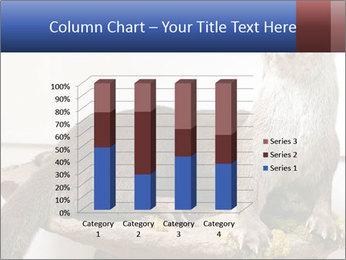 0000072634 PowerPoint Template - Slide 50