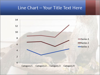 0000072634 PowerPoint Template - Slide 54