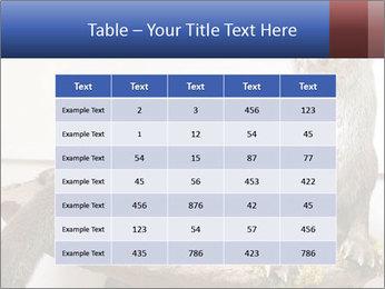 0000072634 PowerPoint Template - Slide 55