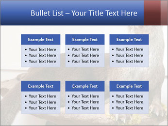 0000072634 PowerPoint Template - Slide 56