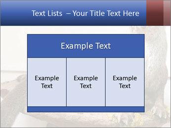 0000072634 PowerPoint Template - Slide 59