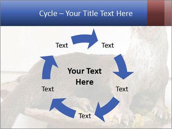 0000072634 PowerPoint Template - Slide 62