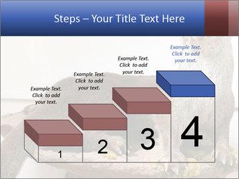 0000072634 PowerPoint Template - Slide 64