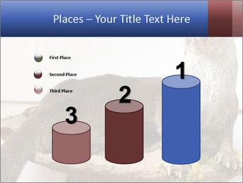 0000072634 PowerPoint Template - Slide 65
