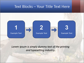 0000072634 PowerPoint Template - Slide 71