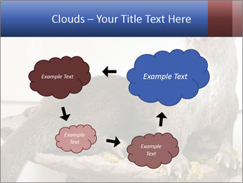 0000072634 PowerPoint Template - Slide 72