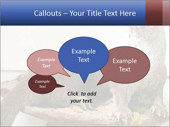 0000072634 PowerPoint Template - Slide 73