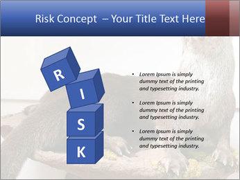 0000072634 PowerPoint Template - Slide 81