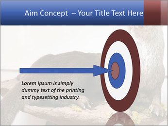 0000072634 PowerPoint Template - Slide 83