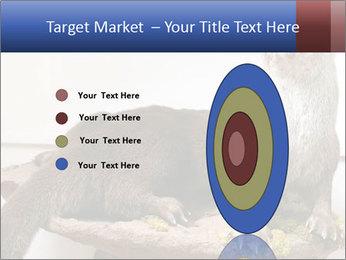 0000072634 PowerPoint Template - Slide 84