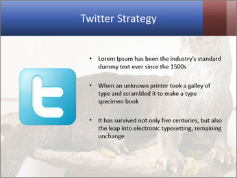 0000072634 PowerPoint Template - Slide 9
