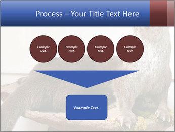 0000072634 PowerPoint Template - Slide 93
