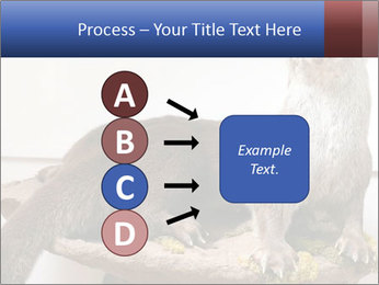 0000072634 PowerPoint Template - Slide 94