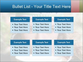 0000072636 PowerPoint Template - Slide 56