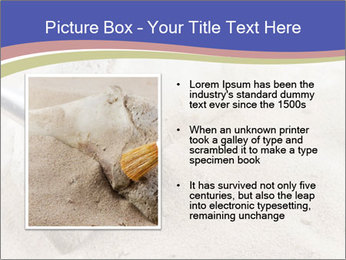 0000072645 PowerPoint Templates - Slide 13