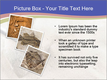 0000072645 PowerPoint Templates - Slide 17