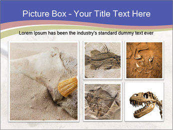0000072645 PowerPoint Templates - Slide 19