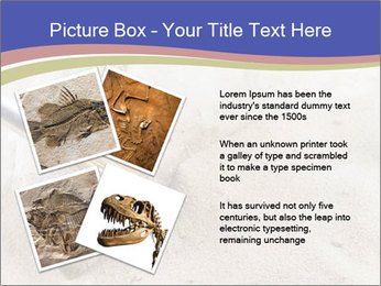 0000072645 PowerPoint Templates - Slide 23
