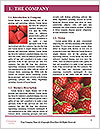 0000072647 Word Templates - Page 3