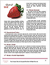 0000072647 Word Templates - Page 4