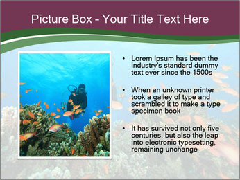 0000072673 PowerPoint Template - Slide 13