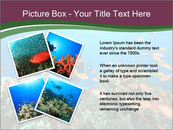 0000072673 PowerPoint Template - Slide 23
