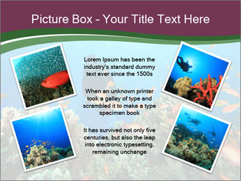 0000072673 PowerPoint Template - Slide 24