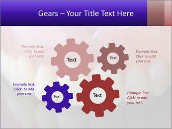 0000072676 PowerPoint Templates - Slide 47