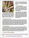0000072677 Word Templates - Page 4