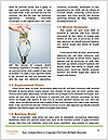 0000072679 Word Templates - Page 4
