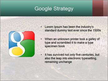 0000072684 PowerPoint Templates - Slide 10