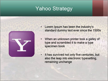 0000072684 PowerPoint Templates - Slide 11