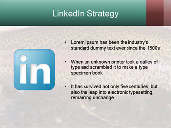 0000072684 PowerPoint Templates - Slide 12